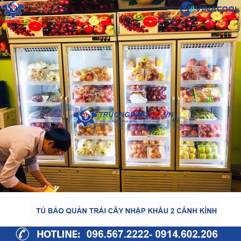 tủ mát bảo quản trái cây nhập khẩu 2 cánh kính