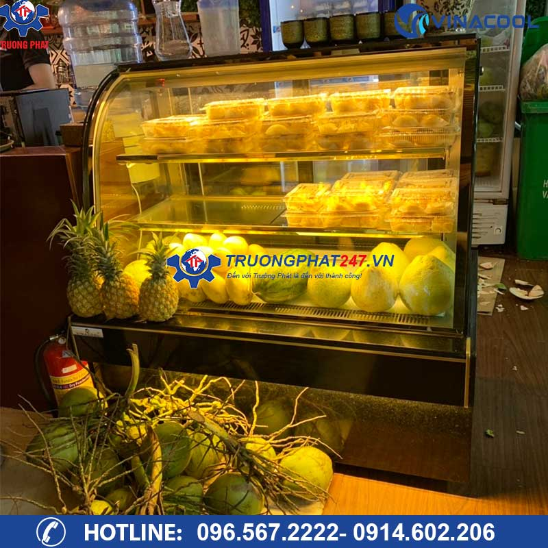 tủ bảo quản bánh kem kính cong dh-1200