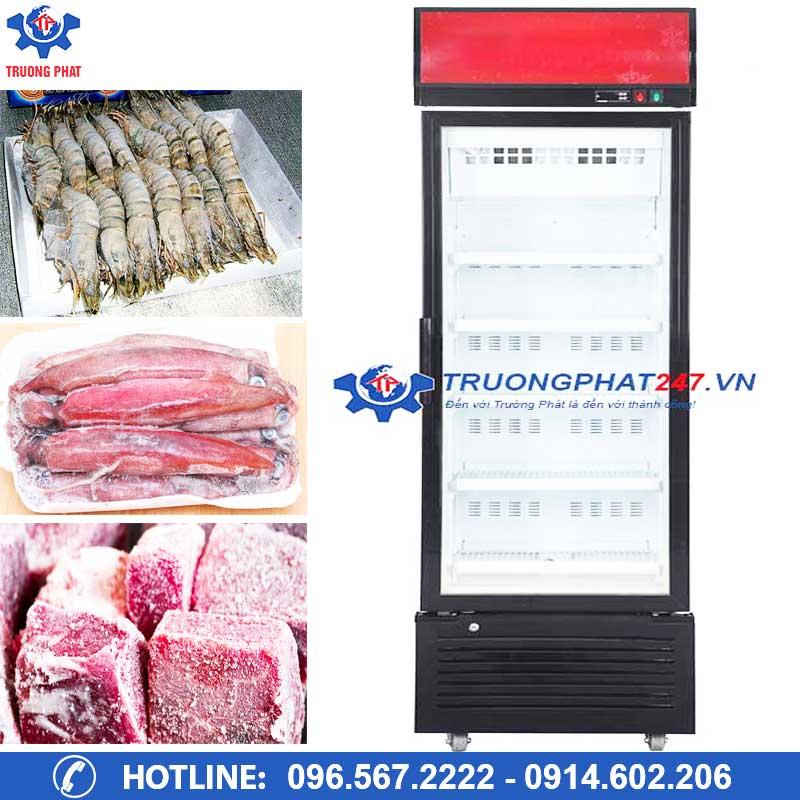 Mách bạn địa chỉ mua tủ đông mini tại Đà Nẵng giá rẻ nhất