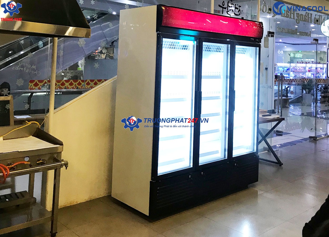 tủ đông trưng bày thực phẩm 3 cánh kính