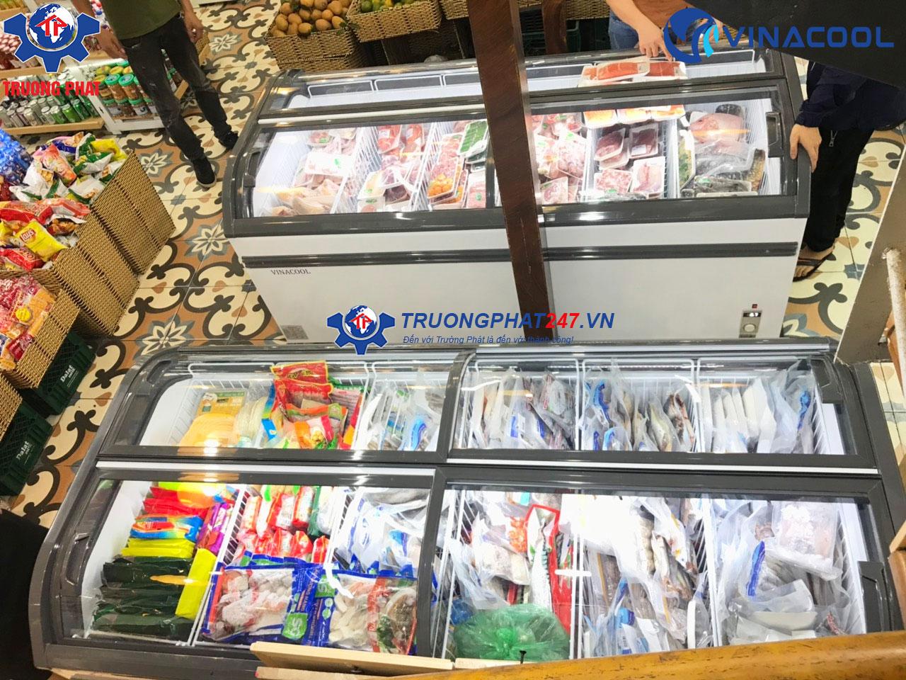 tủ đông lạnh trưng bày thịt cá WD4-1008