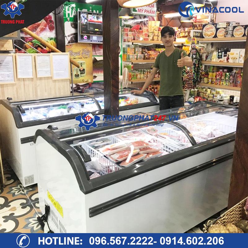 Tủ đông lạnh mặt kính cong WD4-1008