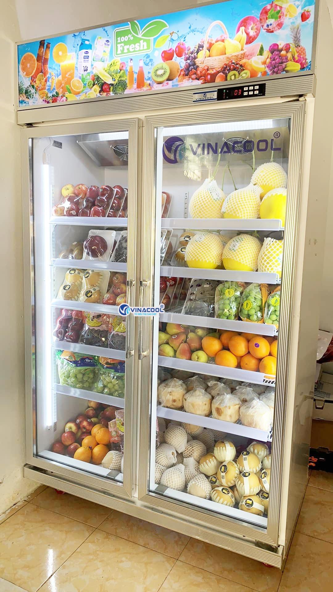 tủ mát trưng bày trái cây 2 cánh kính