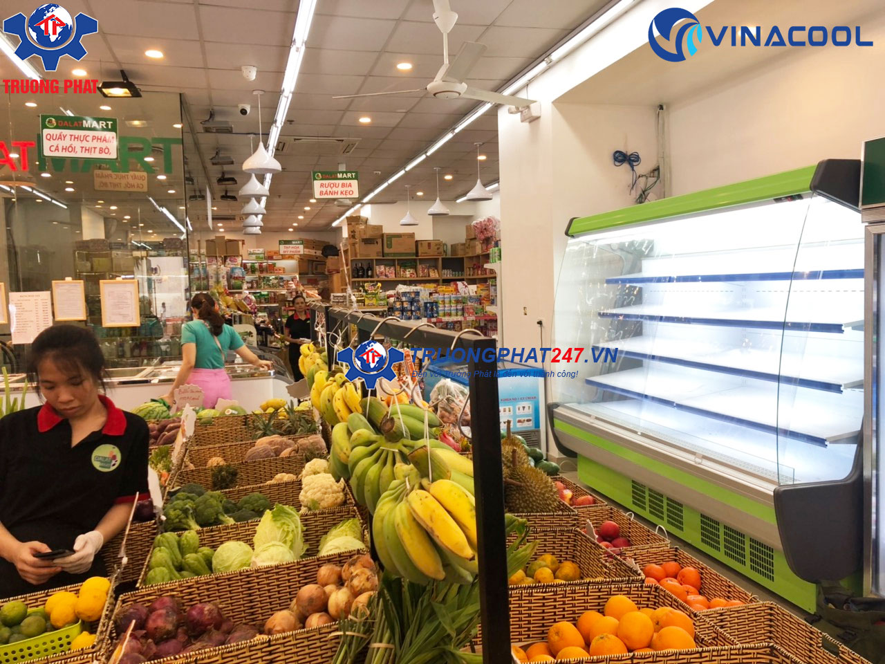 tủ siêu thị tại Dalat Mart