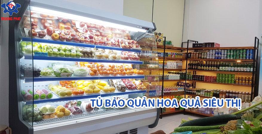 Tủ mát hoa quả siêu thị nên chọn loại nào tốt?
