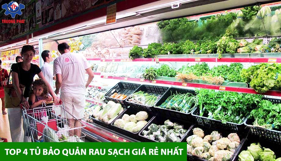 Top 4 tủ bảo quản rau sạch giá tốt nhất