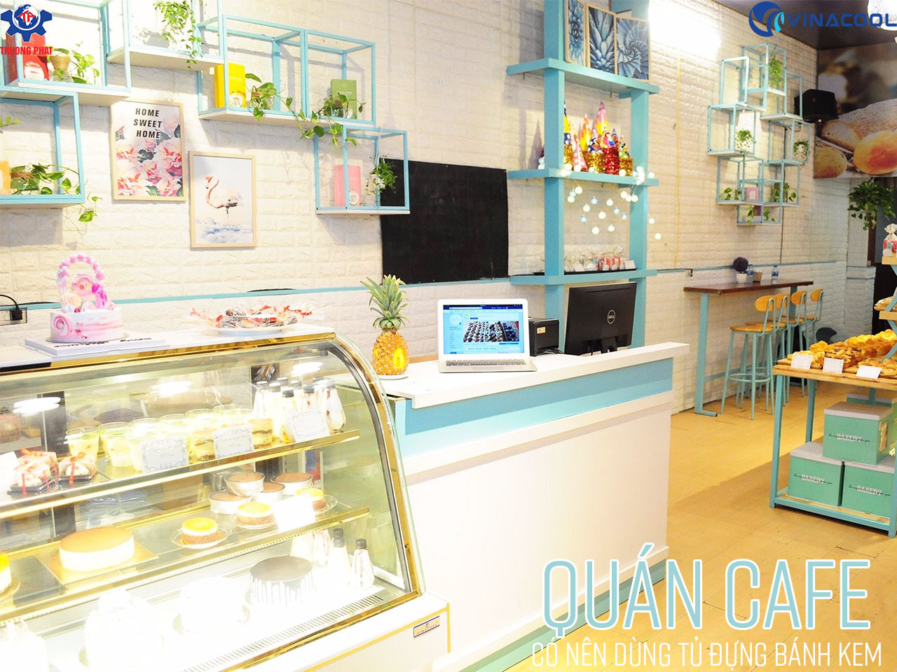 Quán Cafe có nên dùng tủ đựng bánh kem