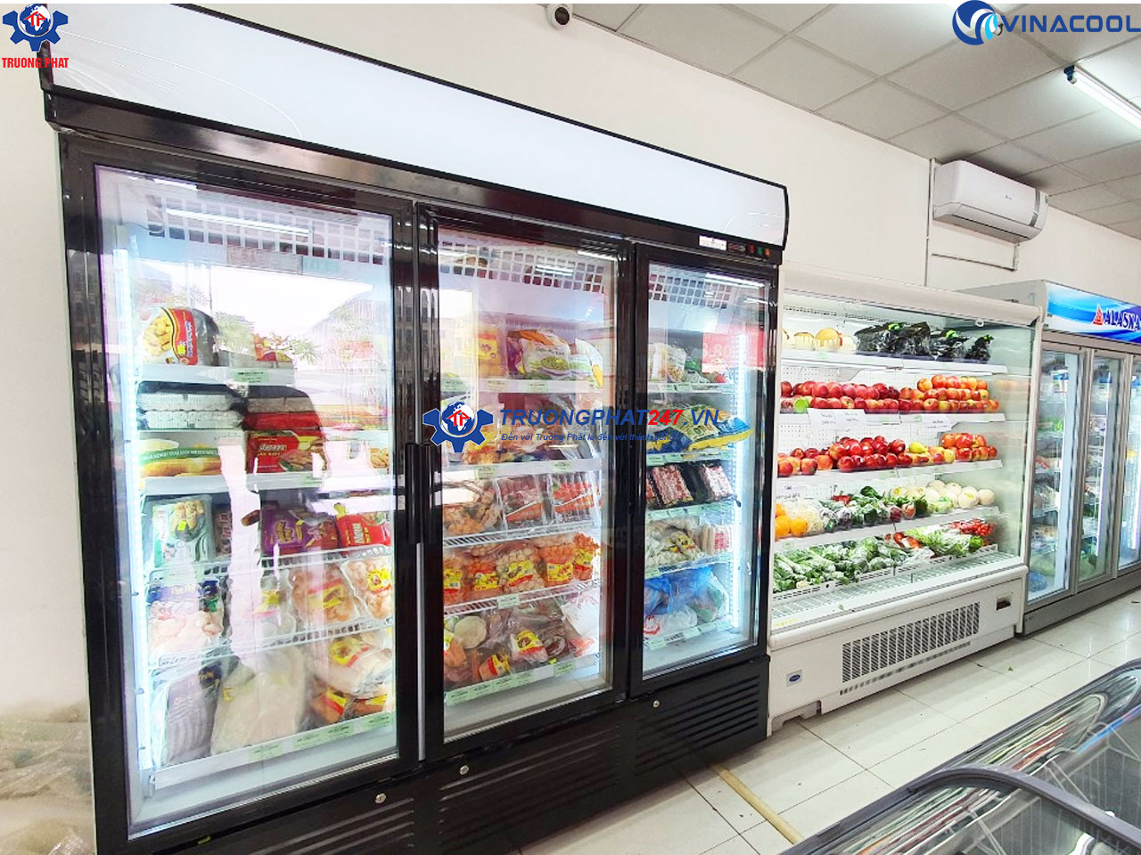 tủ đông bảo quản thực phẩm 3 cánh kính